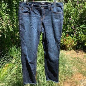 TORRID PREMIUM Blue Jeans Stretch Plus 16